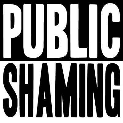 public shaming The amazing adventures of phoenix jones: and the less amazing adventures of some other real-life superheroes: an especial from riverhead books.