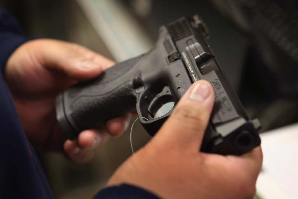 a description of fighting for gun control